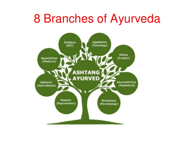 8 branches of Ayurveda