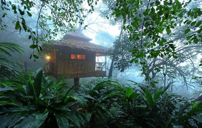 Resorts in Thekkady