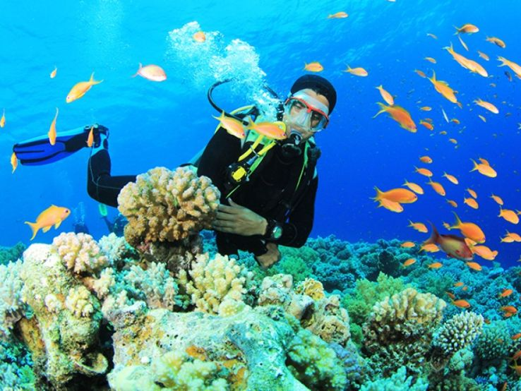 Scuba Diving in Andaman Beaches