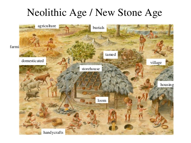 a comparison of the art from the paleolithic and neolithic periods in history They both used tools and they are from the same time paleolithic is when the hunter/gathers were around and the neolithic age is when they started to build permanent shelters.